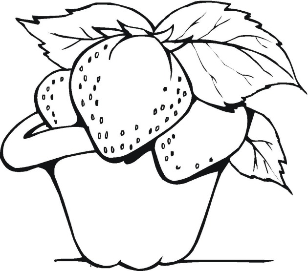Drawings In Fruits Colouring Pages