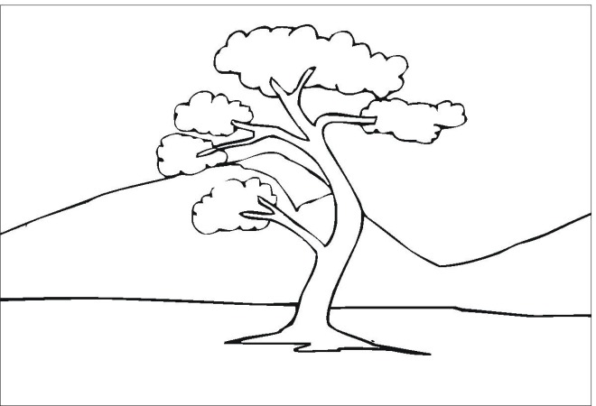 oak tree coloring sheet coloring pages for kids and all ages